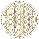 flower of life grid Goddess Elite